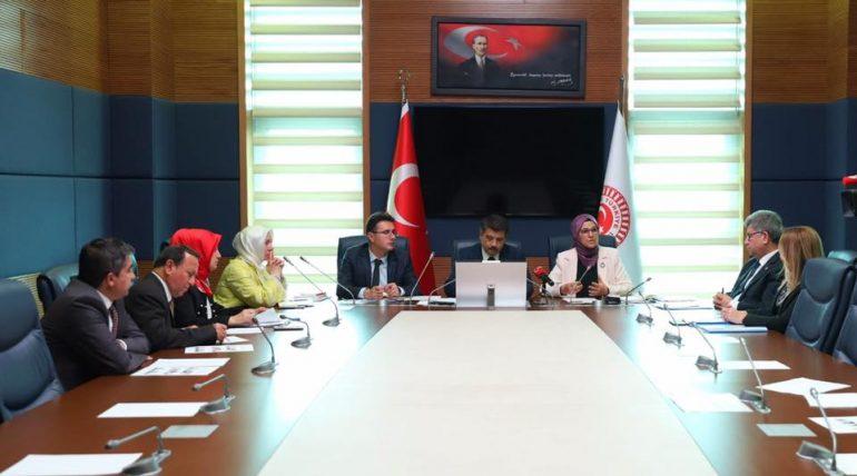 TBMM Down Sendromu, Otizm ve Diğer Gelişimsel Bozukluklar Araştırma Komisyonu görev dağılımı sonrası ilk toplantısı